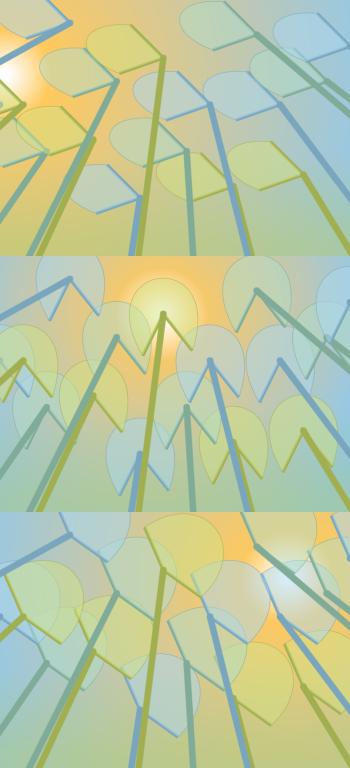 design3-lilypads